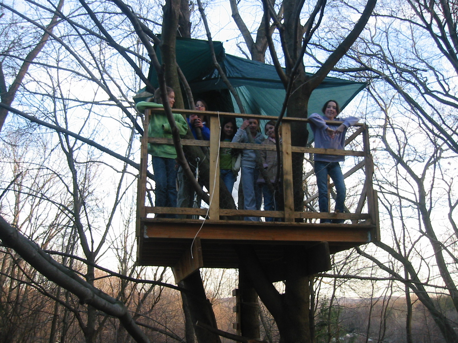 The treehouse 12 for How to build a treehouse roof